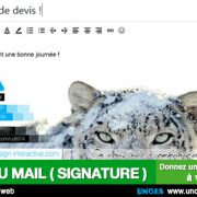 Bandeau signature d'e-mail - Communication Ile de La Réunion