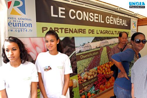 Création de maquette d'imprimé - Communication Ile de La Réunion
