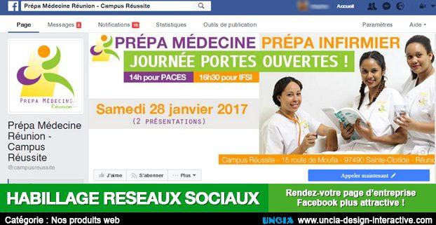 habillage réseaux sociaux - Publicité Ile de La Réunion - Facebook - Youtube - Twitter - Linkedin